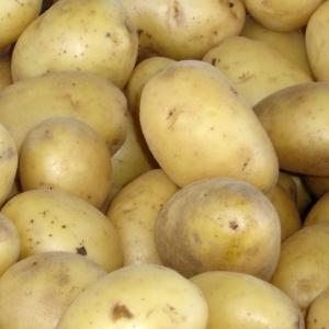 Picture of Krompir