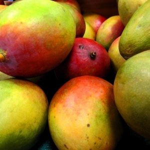 Picture of Mango